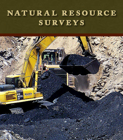Natural Resource Surveys